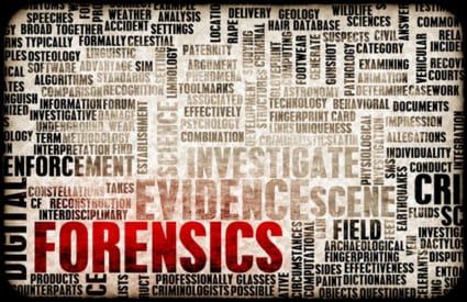Gathering Evidence for Investigations | St. Petersburg | Keck Investigation Service, LLC